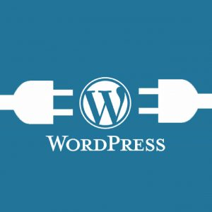 WordPress CMS maintenance services
