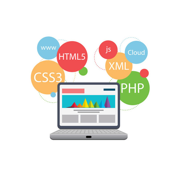 Website Development Services in Bali